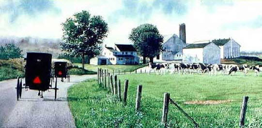 Amischen